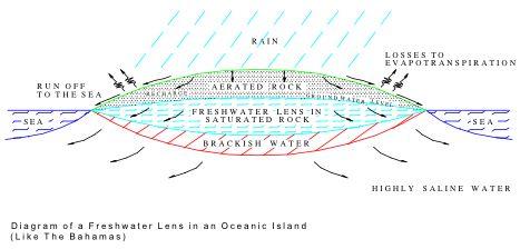 bahamas lens