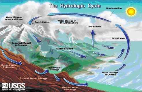 Hydrologic_Cycle
